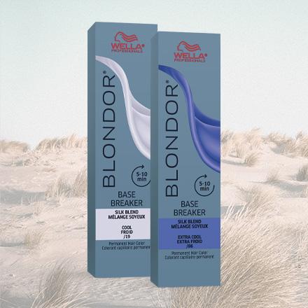 Blondor Base Breakers